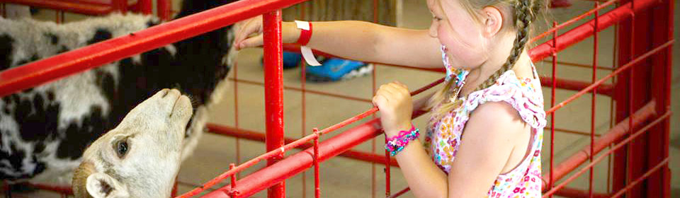 Kids Events at Faulkner's Ranch
