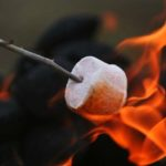 single-marshmallow-roasting