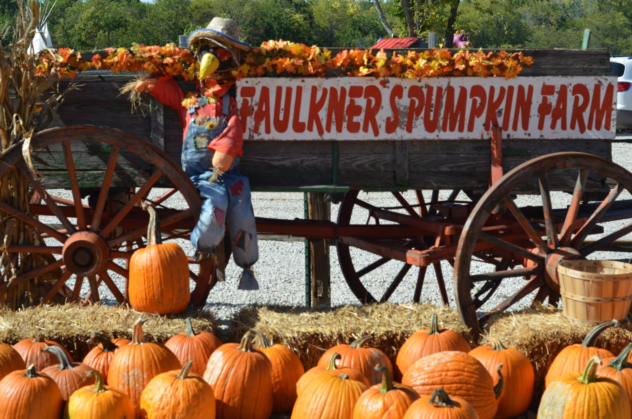 Pumpkin Season 3-faulkners-ranch-kc