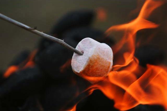 single-marshmallow-roasting