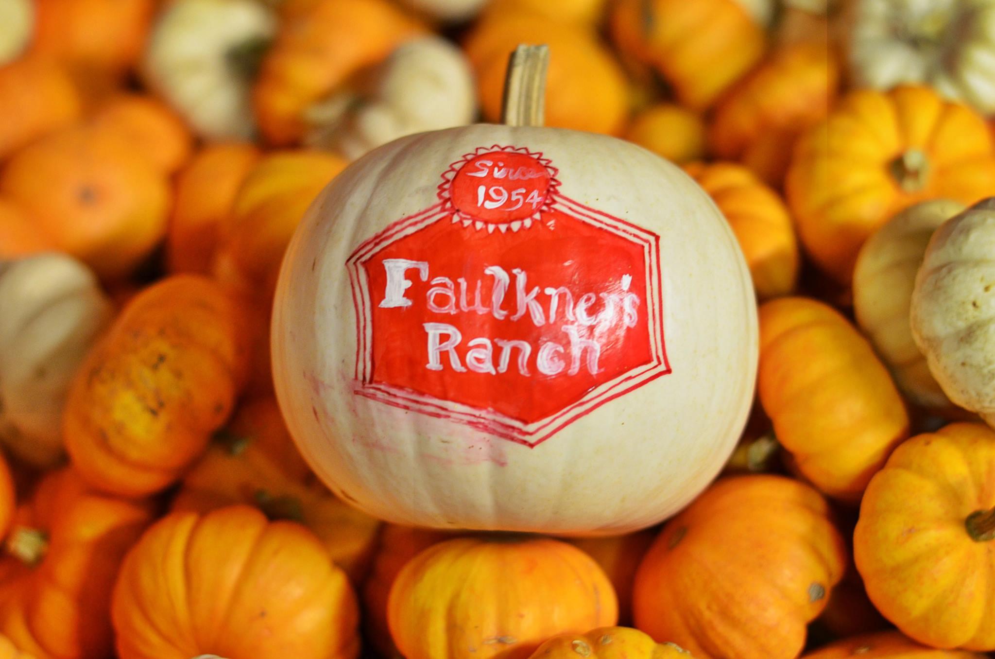 PumpkinSeason143