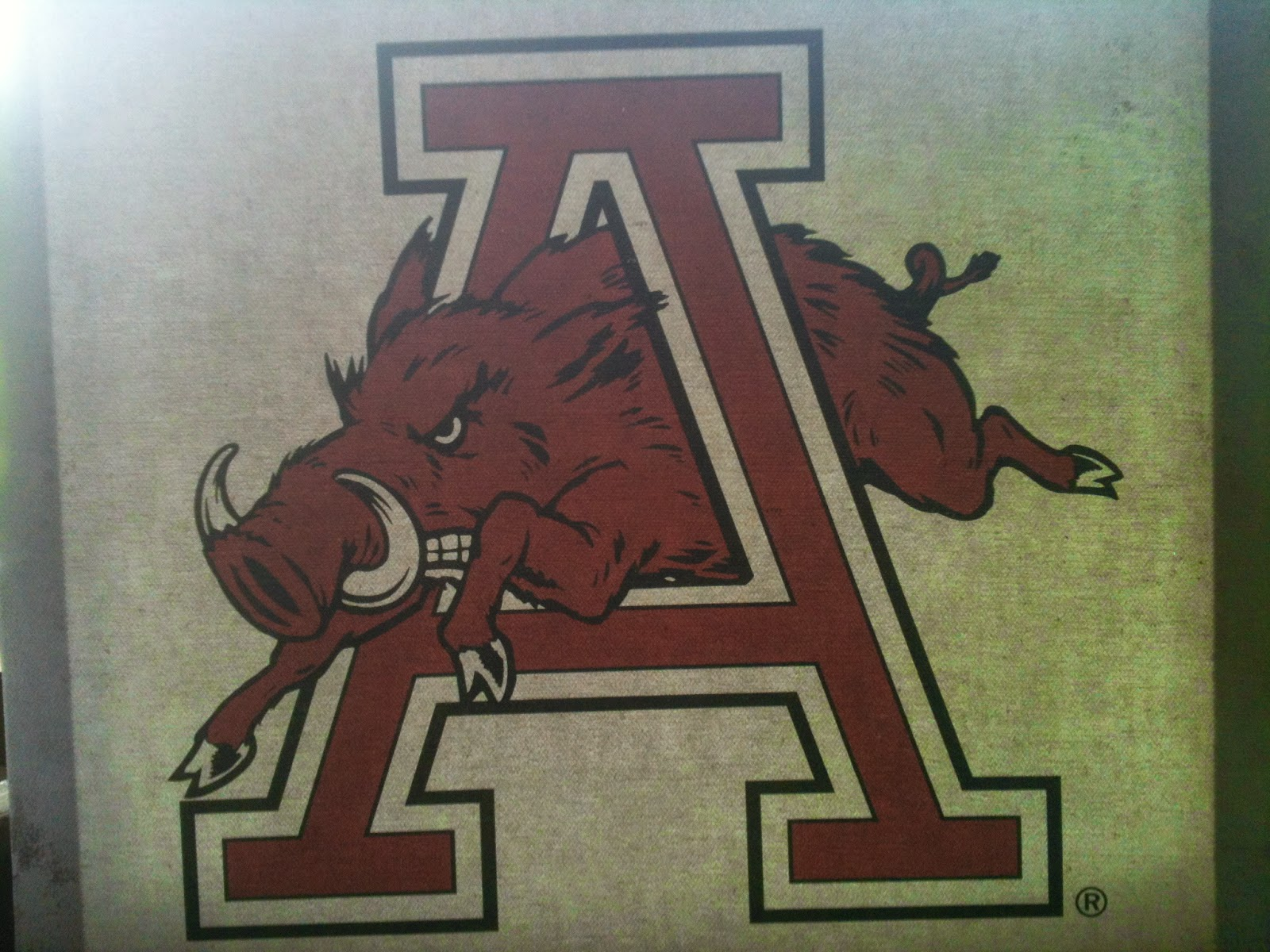 decor pin sooie razorbacks woo arkansas razorback pig pinterest